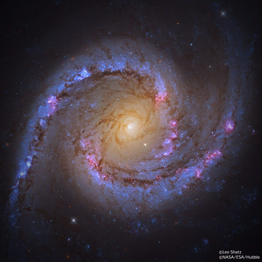 הגלקסיה NGC 1566
